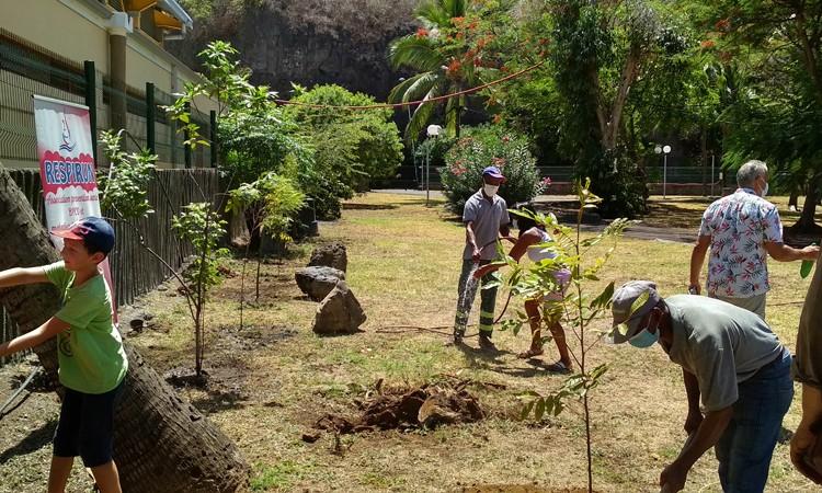 Journée mondiale BPCO 2020 - Respirun ile Réunion